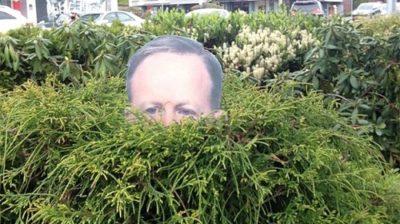 'Garden Spicer' Cutout Created by Victoria Professor Lisa Kadonaga Becomes Internet Sensation