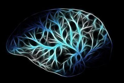 Vagus nerve stimulation showed improvement in awareness of man in vegetative state:  Study